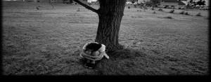 Yalnızlık beyni köreltiyor